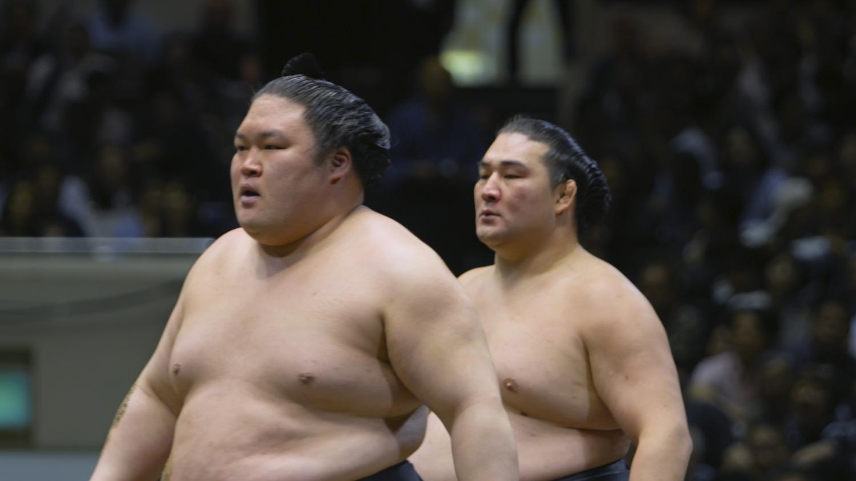 相撲道~サムライを継ぐ者たち~